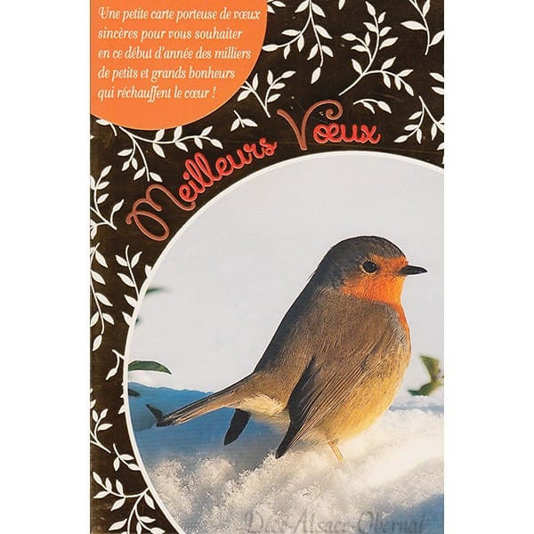 Carte de Voeux Oiseau sur la Neige Meilleurs Voeux
