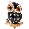 Pin Fancy Owl Schwarz und Gold-Set mit Strass
