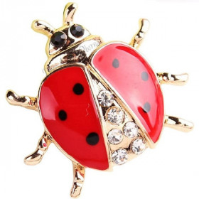 Goldene Brosche Fancy Beetle Form Set mit Strass