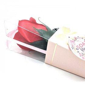 Bieten Sie eine Rote Rosa in Seifenblättern